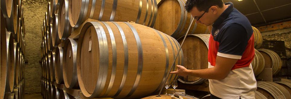 Œnologie cognac Fradon