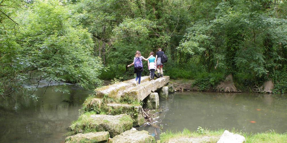 le pont des ânes Clion sur Seugne